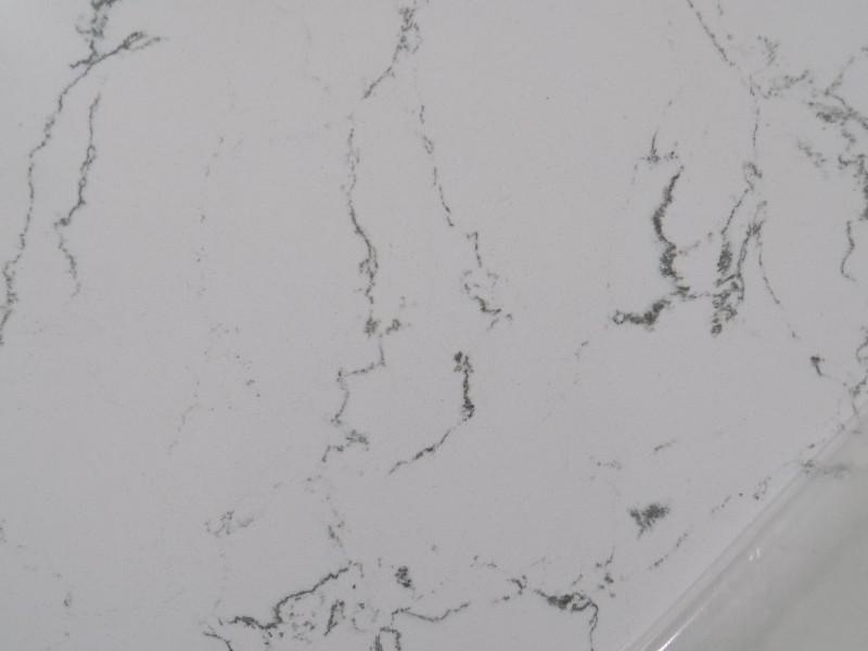 Ocean Carrara